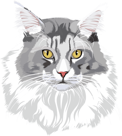 cartoon cat grey with white